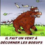 10 EXPRESIONES EN FRANCÉS (VIII)